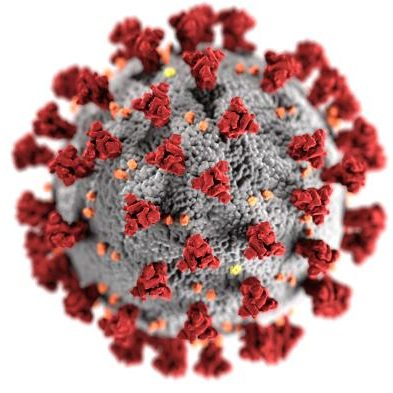 coronavirus-image-from-phil.cdc_.gov_-e1583776768358
